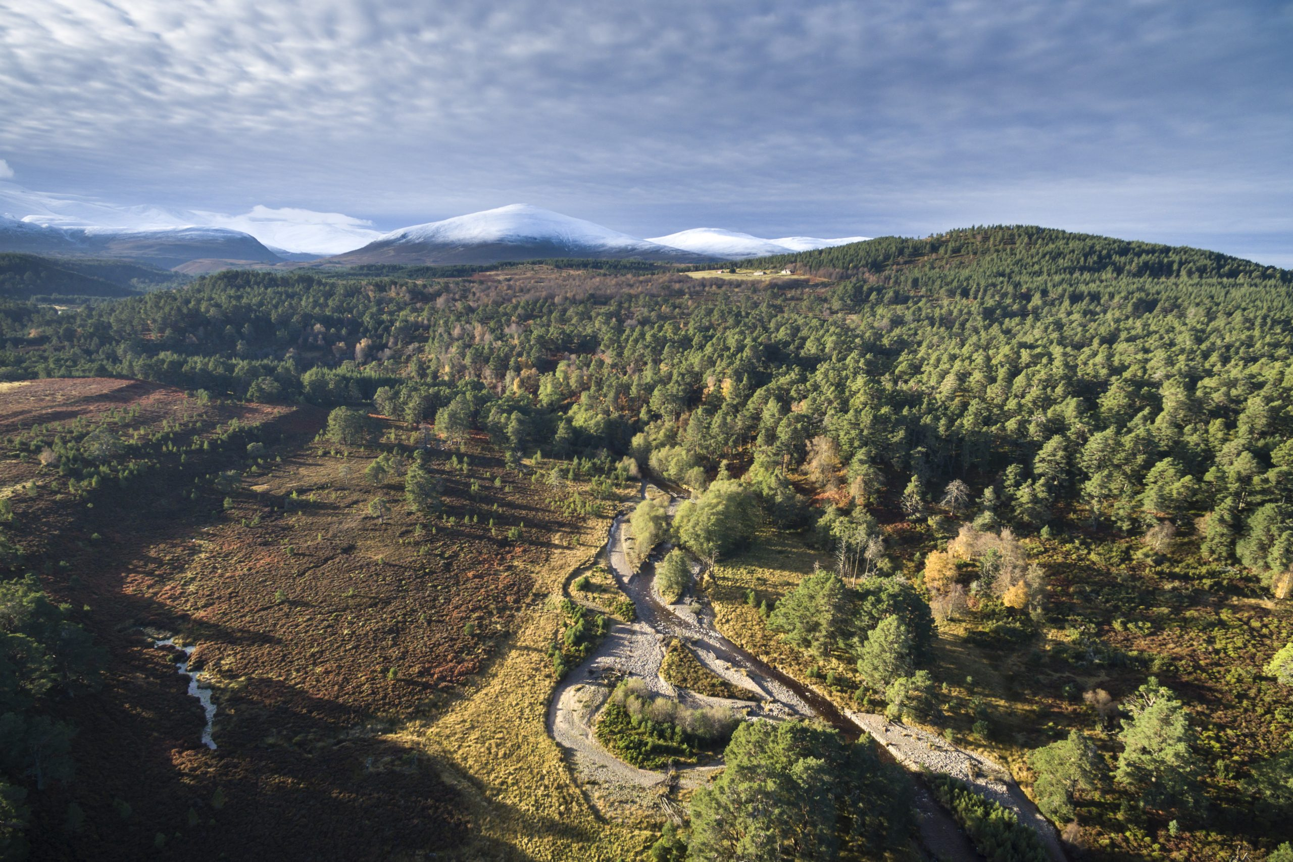 Cairngorms Connect - The Endangered Landscapes Programme