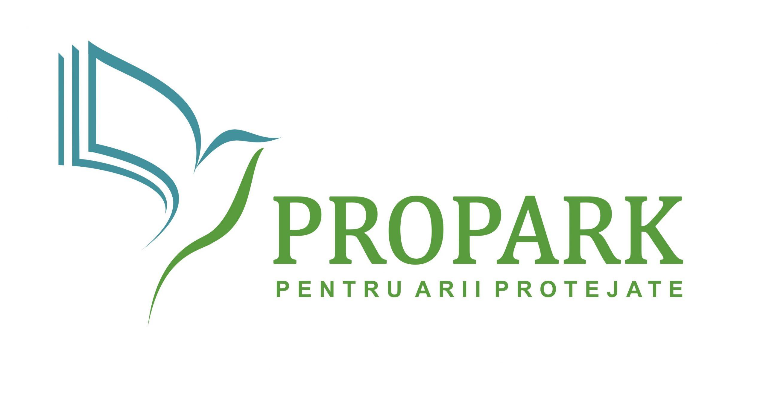 Pro Park
