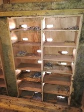 An array of swift nest boxes in a church tower, with forms added to alternate boxes. Photo: Dick Newell).